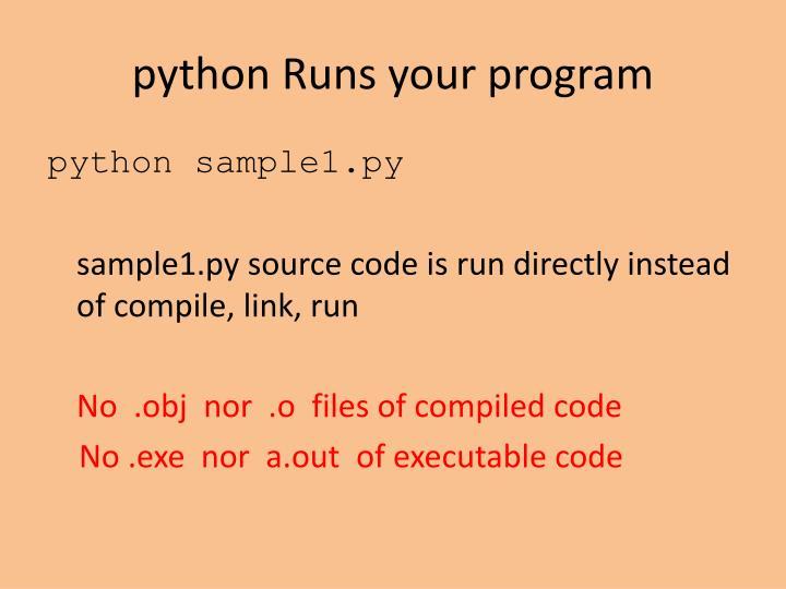 python Runs your program