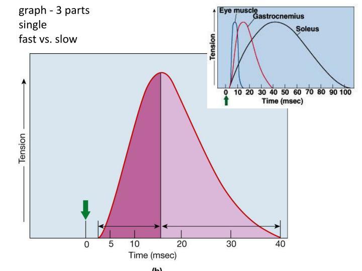 graph - 3 parts