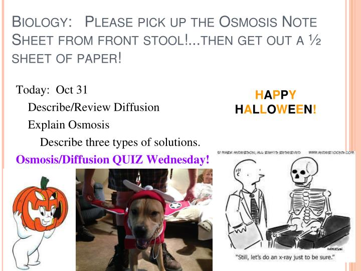 Biology:   Please pick up the Osmosis Note Sheet from front stool!...then get out a ½ sheet of paper!