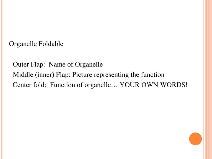 Organelle Foldable