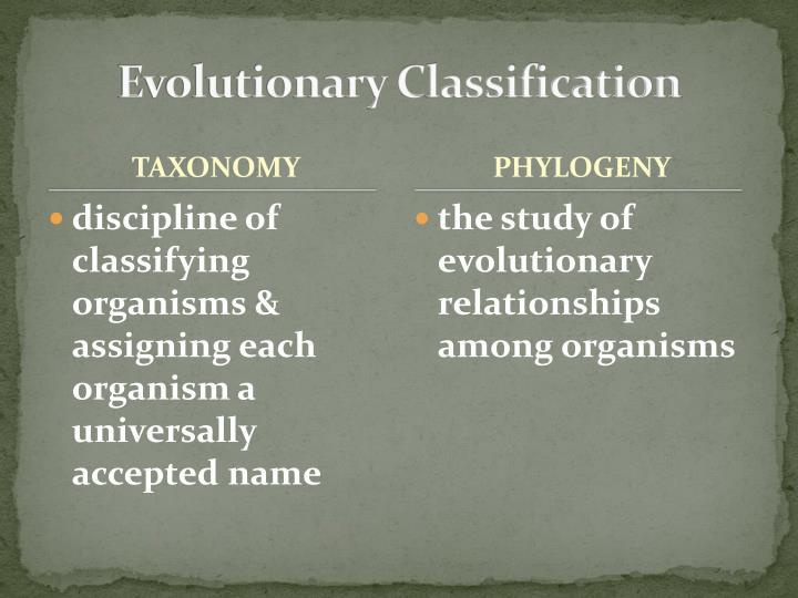 Evolutionary Classification