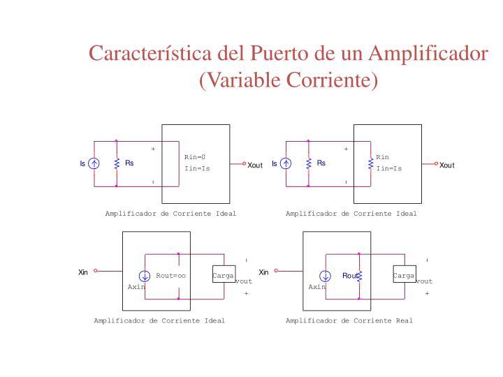 Característica del Puerto de un Amplificador (Variable Corriente)