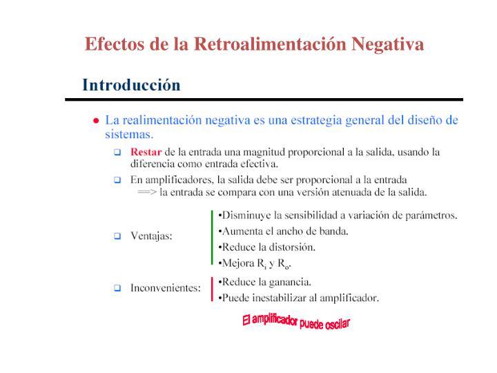 Efectos de la Retroalimentación Negativa
