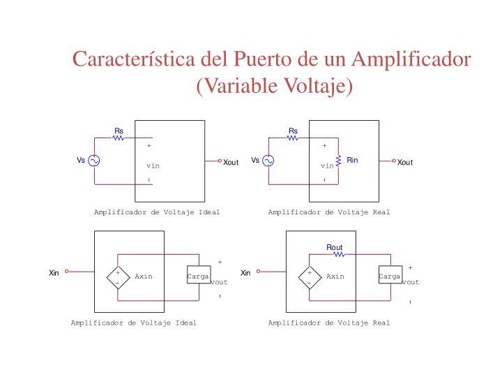Característica del Puerto de un Amplificador