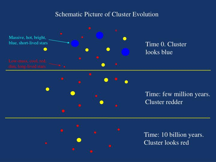 Schematic Picture of Cluster Evolution