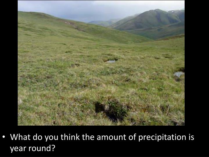 What do you think the amount of precipitation is year round?