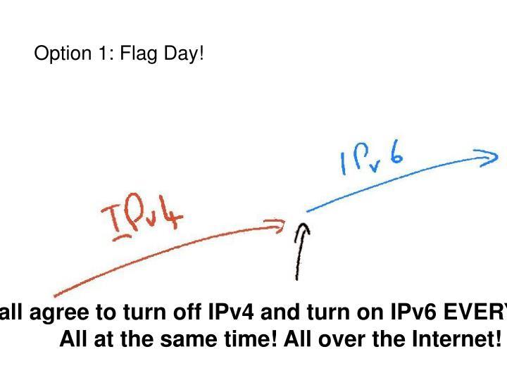 Option 1: Flag Day!