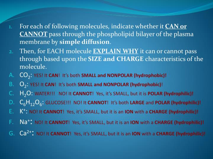 For each of following molecules, indicate whether it