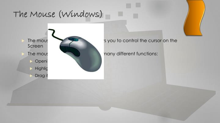 The Mouse (Windows)