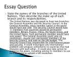 essay question1