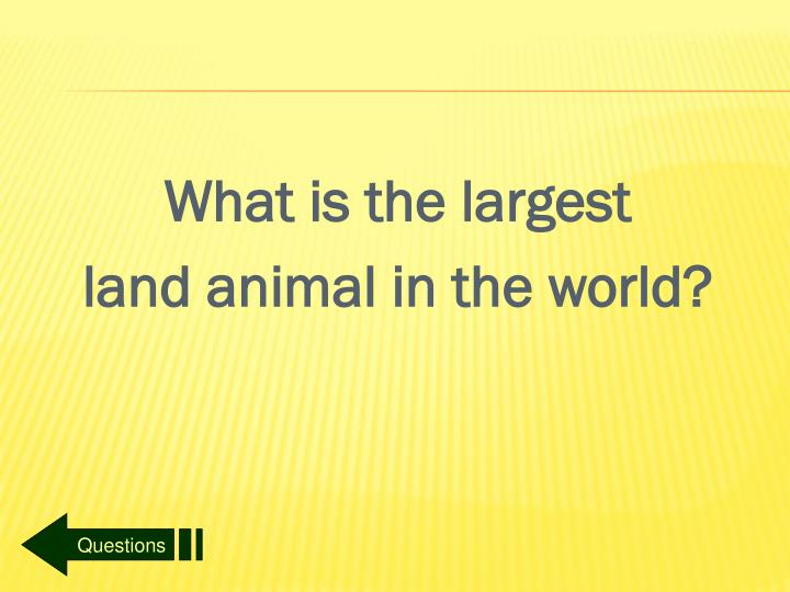 What is the largest