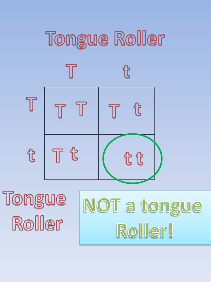 Tongue Roller