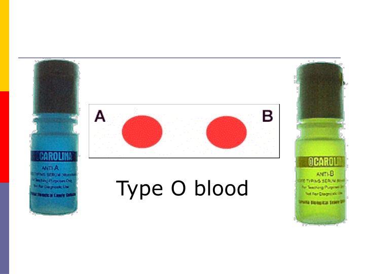 Type O blood