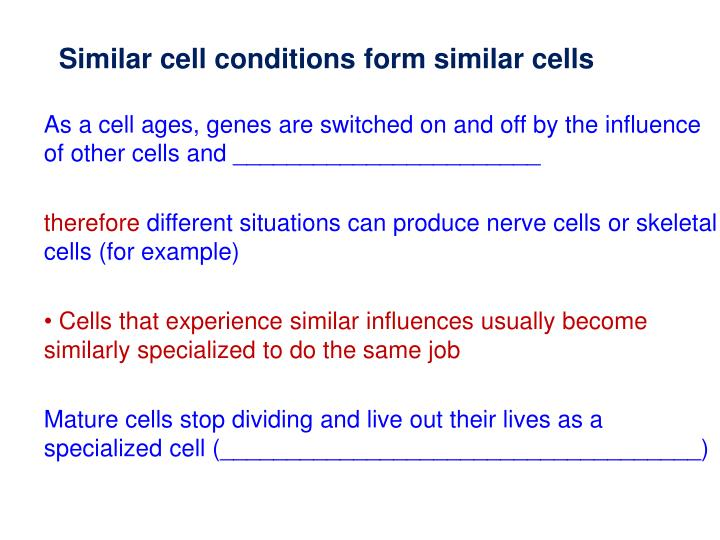 Similar cell conditions form similar cells