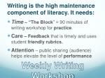 writing is the high maintenance component of literacy it needs