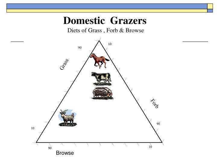 Domestic  Grazers