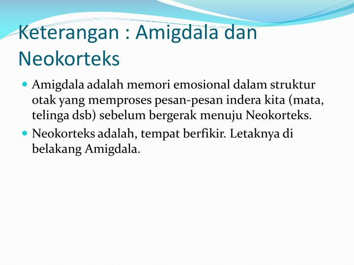 Keterangan : Amigdala dan Neokorteks