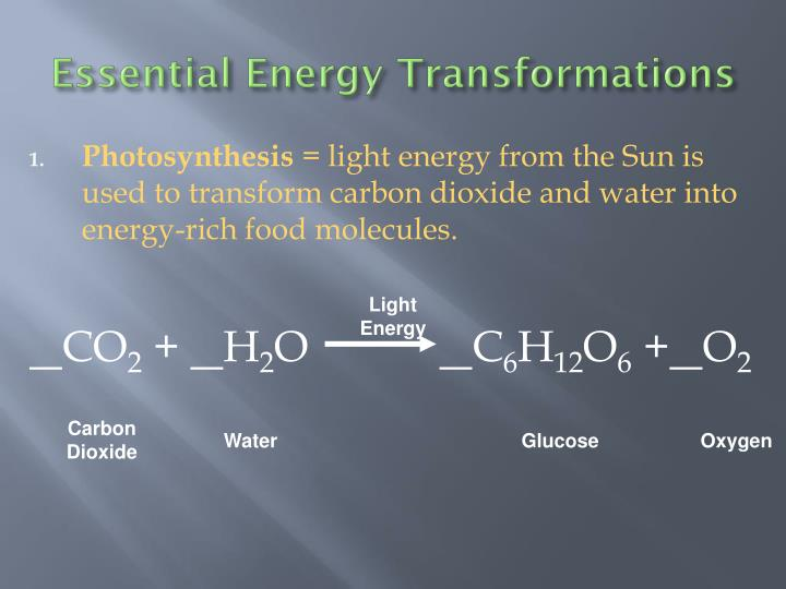 Essential Energy Transformations