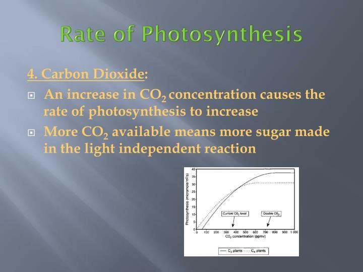 4. Carbon Dioxide