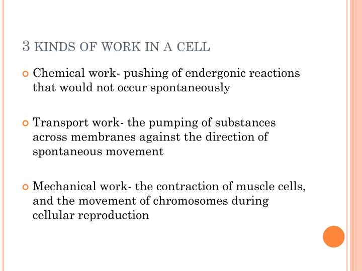 3 kinds of work in a cell