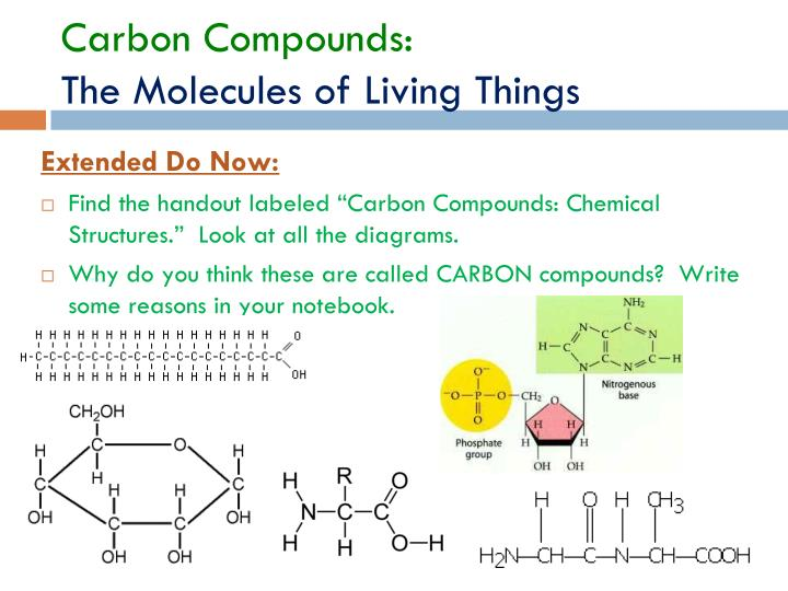 Carbon Compounds: