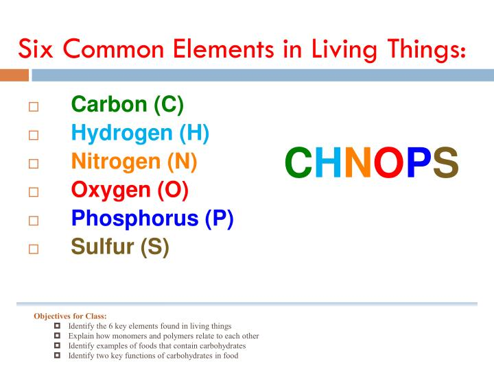 Six Common Elements in Living Things: