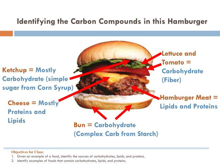 Identifying the Carbon Compounds in this Hamburger