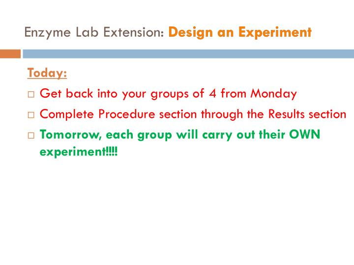 Enzyme Lab Extension: