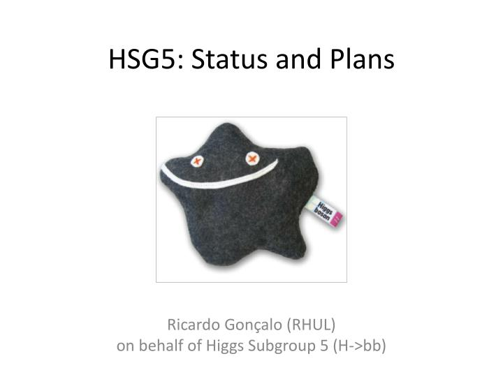 hsg5 status and plans