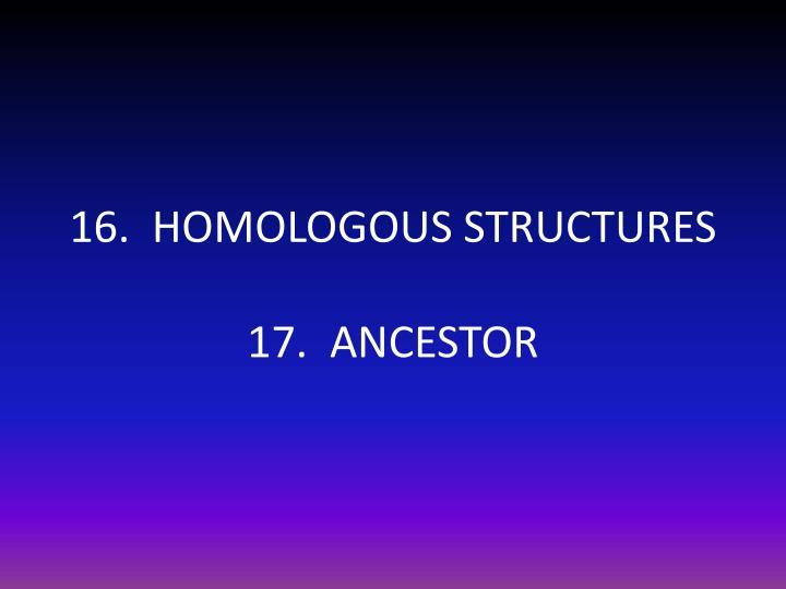 16.  HOMOLOGOUS STRUCTURES