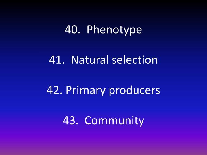 40.  Phenotype