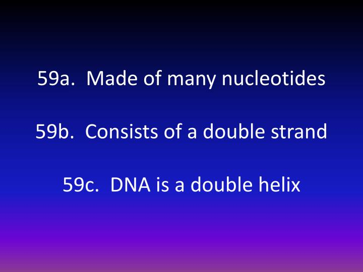 59a.  Made of many nucleotides
