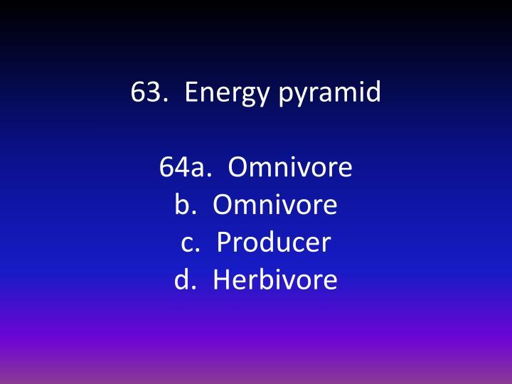 63.  Energy pyramid