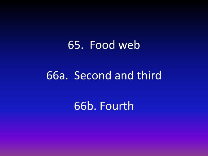 65.  Food web