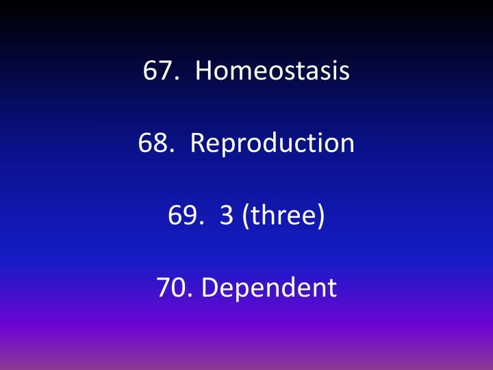67.  Homeostasis