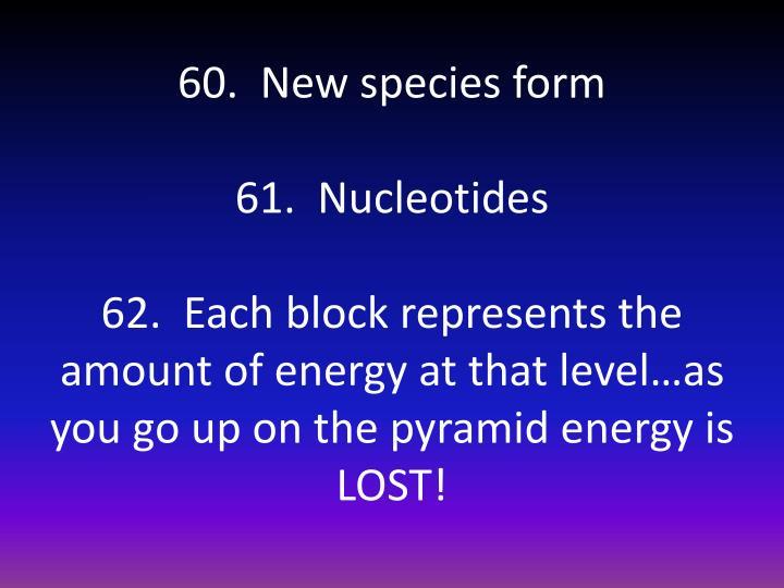 60.  New species form