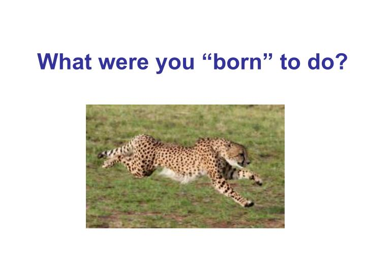 """What were you """"born"""" to do?"""