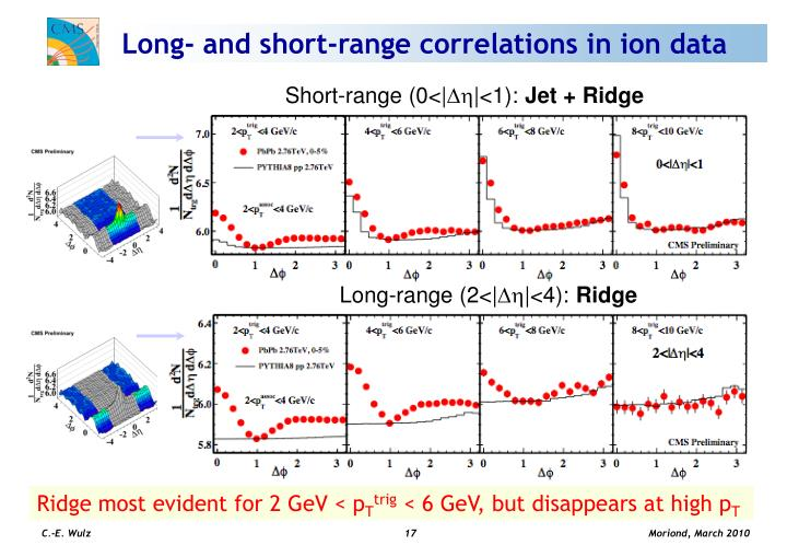 Long- and short-range correlations in ion data