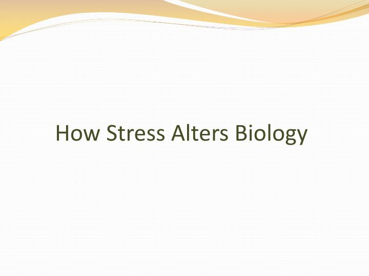 How Stress Alters Biology