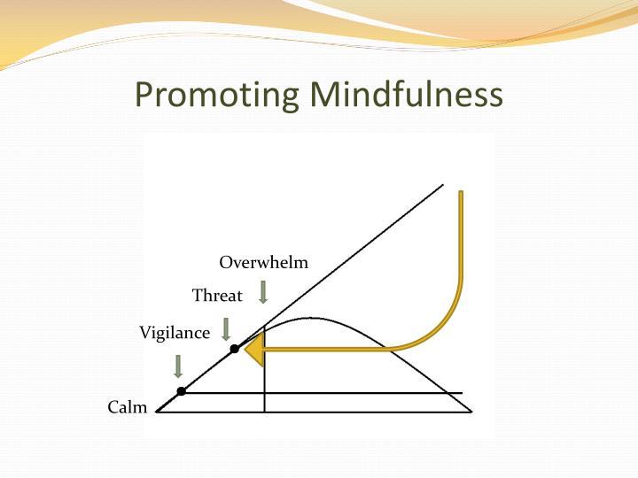 Promoting Mindfulness