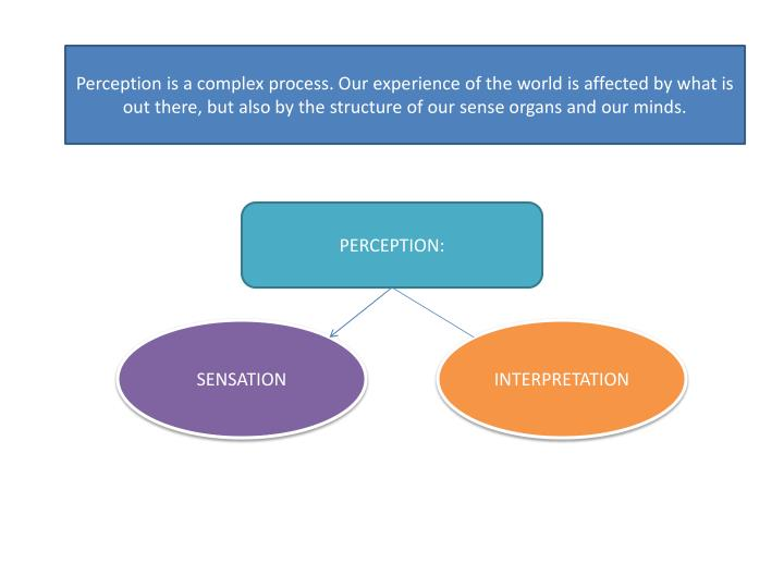Perception is a complex process. Our experience of the world is affected by what is out there, but also by the structure of our sense organs and our minds.