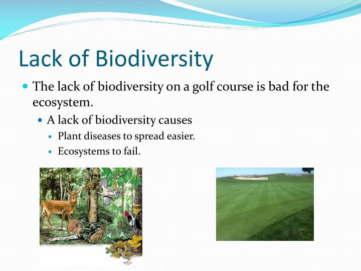 Lack of Biodiversity
