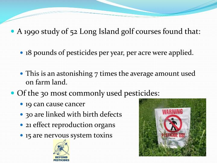 A 1990 study of 52 Long Island golf courses found that: