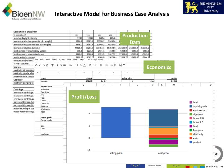 Interactive Model for Business Case Analysis