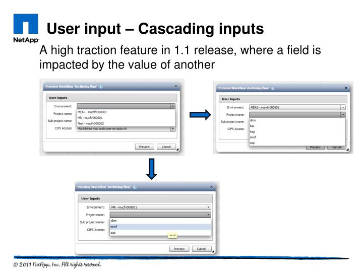 A high traction feature in 1.1 release, where a field is impacted by the value of another