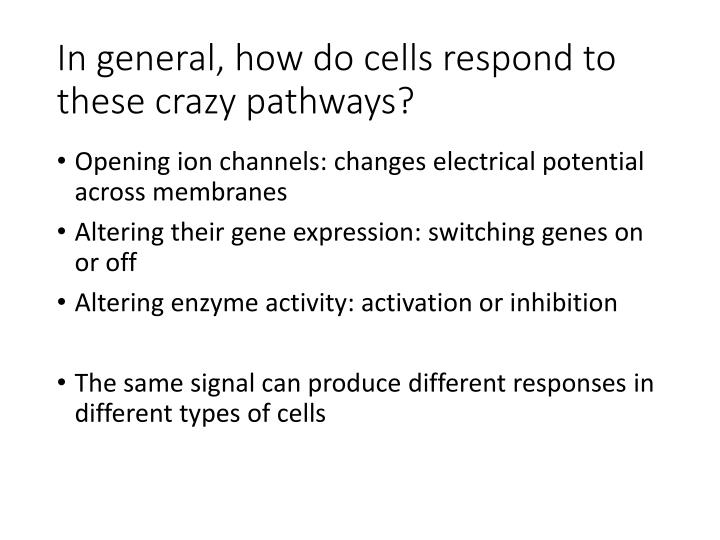 In general, how do cells respond to these crazy pathways?