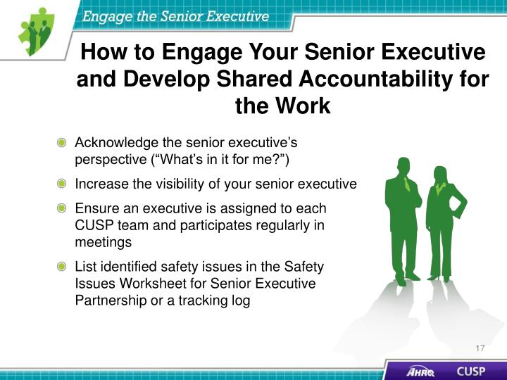 How to Engage Your Senior Executive and Develop Shared Accountability for the Work