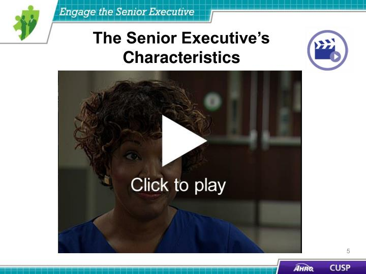 The Senior Executive's Characteristics