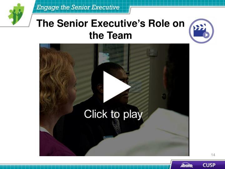 The Senior Executive's Role on