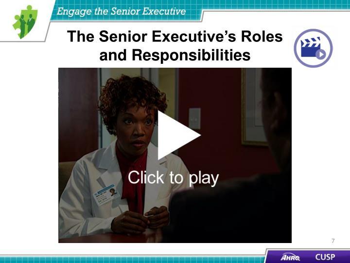 The Senior Executive's Roles